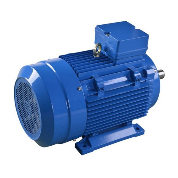 EUMA Asynchronous Electric Motor-3