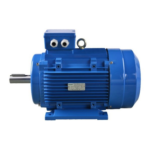EUMA Asynchronous Electric Motor-4